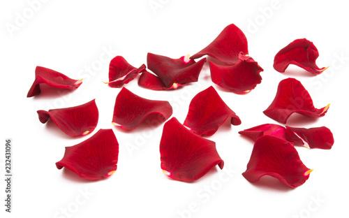 Foto Murales rose petals isolated