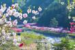 長野県 花桃の里