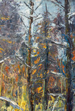Abstract winter background - original oil painting winter white trees, bushes in the snow, beautiful winter forest