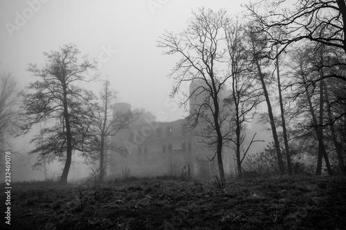 Gotycko - renesansowy zamek w Drzewicy