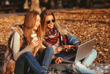 Two young woman in the park using a laptop - 232478665