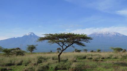 Landschaft am Kilimandscharo, Kenia © Tanja