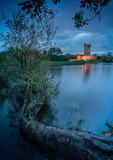Burg am See beleuchtet in der Abenddämmerung mit Baumstamm im Vordergrund  - 232502483