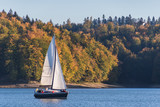 Autumnal landscape with one sailboat sailing on the lake surrounded by hill grown with forest trees on a sunny day - 232513029