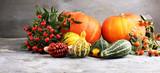 Diverse assortment of pumpkins on a stone background. Autumn harvest - 232518044
