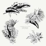 Vector monochrome set of tropical leaves, Exotic natural vintage - 232525451