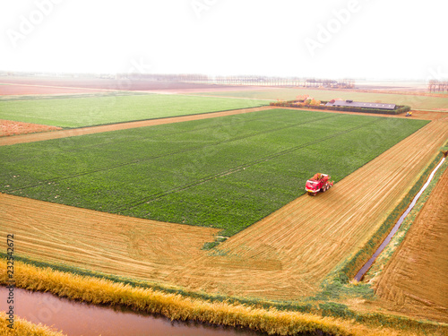 Foto Murales A view of a harvest potato with a tractor  in farm.