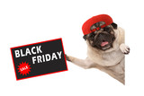 frolic pug puppy dog with red cap, holding up sale sign with text Black Friday, hanging sideways from white banner, isolated - 232545473