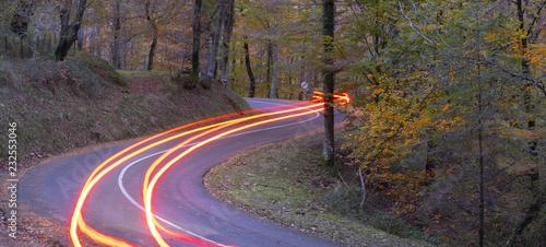 Wall mural Car lights at night crossing in forest in autumn, Aiako Harriak natural park, Euskadi