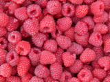 Raspberries. Nature photography