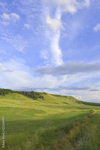 Leinwandbild Motiv Summer landscape with mountain