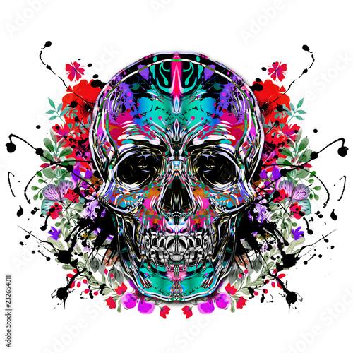 Цветной череп, изолированных на белом фоне - 232654811