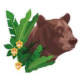 wild brown bear  cartoon