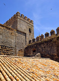 Tower of Alcazar in Carmona, province of Seville, Andalusia, Spain - 232683409