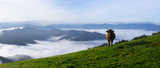 Cow grazing in green mountains with fog, Basque Country, Euskadi - 232698695