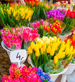 Bunches of tulips for sale in Wroclaw