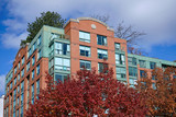 apartment building with oak tree in fall colors - 232731498
