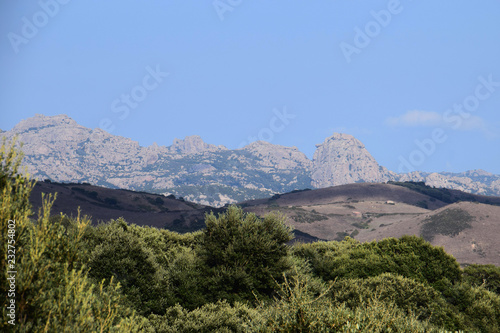typical north sardinia landscape mount limbara, rocky granitic massif landscape impressions in north sardinia in autumn as a rock background