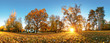 Leinwandbild Motiv Autumn park with sun and forest - Panorama