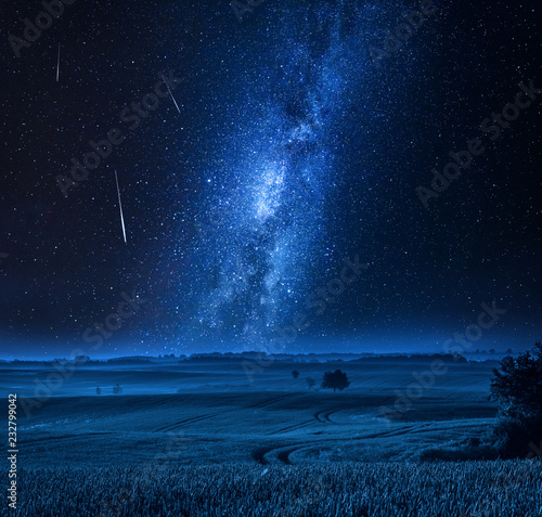 Foto Murales Milky way over field with tree at night