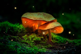 Fireflies and glowing mushrooms in a dark forest at dusk - 232799410