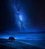 Dreamland with one tree on field and milky way - 232799687
