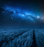 Amazing milky way over field with wheat at night - 232800016