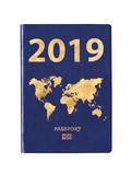 Passport 2019 with a world map on the cover, concept - 232801013