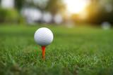 golf ball on green backgrund.