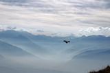 Aussicht vom Niederhorn, Berner Alpen, Schweiz