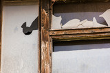 Old window with wooden frame and broken glass - 232850226