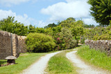 Country village path between golden stone walls, trees, flowering shrubs, Cotswolds rural countryside, UK , on a sunny summer day . - 232862469
