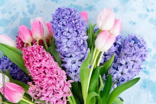 Hiacyntowi błękitni i różowi świezi kwiaty na błękitnym tle z kopii przestrzenią