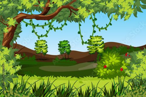 Wall mural A green nature landscape