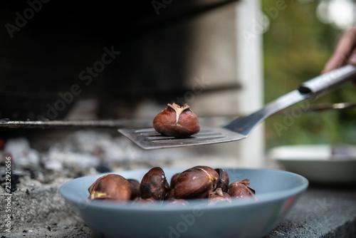 Foto Murales Closeup of roasted chestnut on metal spatula