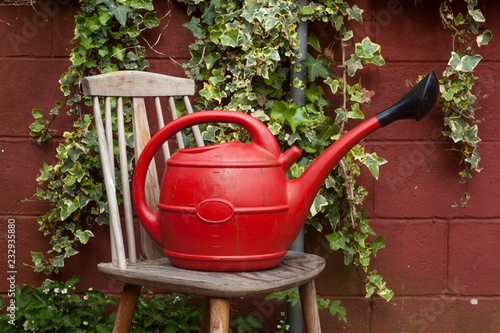 Poster Red watering can