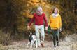 Leinwandbild Motiv A senior couple with a dog on a walk in an autumn nature.