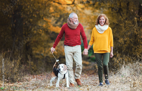 Leinwanddruck Bild A senior couple with a dog on a walk in an autumn nature.