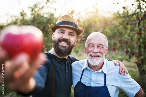 Leinwanddruck Bild A senior man and adult son standing in orchard in autumn, holding an apple.
