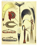 Ancient collection of african tribal ethnic accessories from the West and North coast of Dutch New Guinea, isolated elements. By F.S.A. De Clercq and J.D.E. Schmeltz Leiden 1893 New Guinea - 232972871