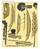 Ancient detailed ethnic collection of african boats and wooden decorations, coast of Dutch New Guinea, isolated elements. By F.S.A. De Clercq and J.D.E. Schmeltz Leiden 1893 New Guinea - 232973219