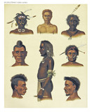 Ancient detailed ethnic illustration of various african portraits. Coast of Dutch New Guinea, isolated elements. By F.S.A. De Clercq and J.D.E. Schmeltz Leiden 1893 New Guinea - 232973475