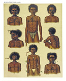 Ancient detailed ethnic illustration of various african portraits and tattooed bodies. Coast of Dutch New Guinea, isolated elements. By F.S.A. De Clercq and J.D.E. Schmeltz Leiden 1893 New Guinea - 232973480