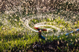 Splashing water to water the lawn as a background - 232975820