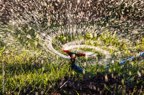 Rozpryskiwania wody do wody trawnik jako tło