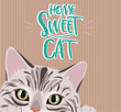 Home sweet cat cute illustration with cat. Editable vector illustration