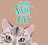 Home sweet cat cute illustration with cat. Editable vector illustration © miobuono