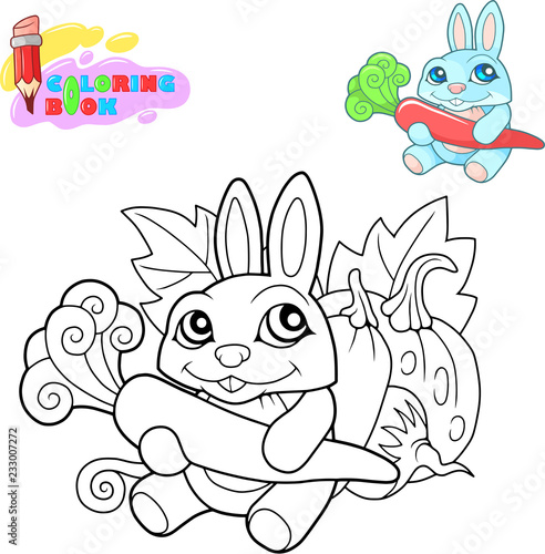 Coloring book, cartoon cute rabbit with a carrot in its paws, funny illustration - 233007272
