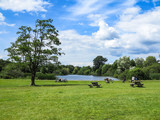 Pond and Picnic Tables - 233040611