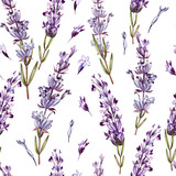 Watercolor pattern with Lavender. Hand painting. Watercolor.  - 233091296